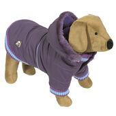 Doggy Things Dandy Parka Waterproof Dog Coat With Hood Purple