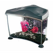 Marina Betta Tank Graphite