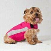 ThunderShirt Anxiety Relief Dog Calming Vest in Pink Polo