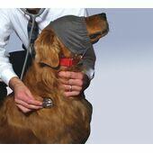 ThunderShirt ThunderCap Dog Calming Cap
