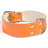 Doggy Things Bull Leather Dog Collar - Orange