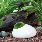 Fluval Ceramic Duck Stone With Moss White