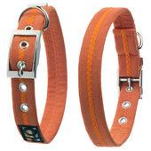 Oscar & Hooch Dog Collar Clementine Orange