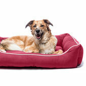 Dog Gone Smart Lounger Dog Bed Berry