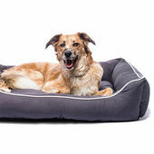 Dog Gone Smart Lounger Dog Bed Pebble Grey