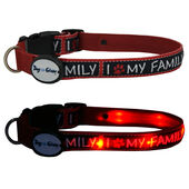 Dog E Glow I Love My Family Flashing Light Up Dog Collar