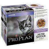 40 x Purina Pro Plan Cat Nutrisavour Junior With Turkey In Gravy 85g