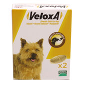 Veloxa Chewable Worming Tablets For Dogs Tabs