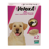 Veloxa XL Beef Flavoured Chewable Worming Tablets For Dogs