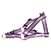 Doodlebone Reflective Bold Tape Harness Purple
