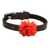 Wag N Walk Designer Collar Flower Mocha