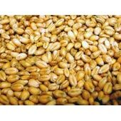 Willsbridge Pigeon Wheat 20kg