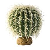 Exo Terra Desert Plant Barrel Cactus