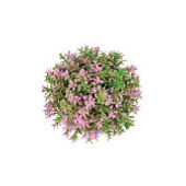 Biorb Easy Plant Topiary Ball Pink