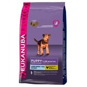 Eukanuba Dog Puppy & Junior Large Breed Chicken 12kg