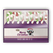 12 x Festive Rawhide Collection Candy Canes 8 pack