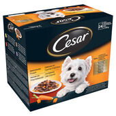 Cesar Pouch Deliciously Fresh Favourites In Sauce 24x100g