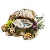 Classic Action Ornament Clam Shell With Plants 130mm