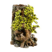 Classic Tree Life Bonsai With Plants 130mm