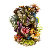 Classic Coral Life Stone With Plants 135mm