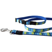 Hem & Boo Nylon Puppy Set Zig Zags Blue 10mm X20-30cm (120cm)