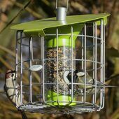 Contemporary Squirrel Proof Roundhaus Compact Seed Feeder Lime Green
