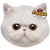 Pet Faces Cushion Exotic Cat 45cm