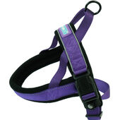 Dog & Co Nylon Norwegian Harness Reflective Purple