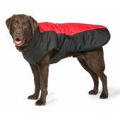 Danish Design Sports Luxe Waterproof Dog Coat in Red