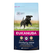 Eukanuba Developing Junior Large Breed Dog Food with Chicken