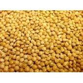 Willsbridge White Millet Seed 20kg