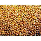 Versele Laga Red Millet 25kg