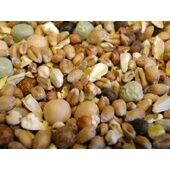 Willsbridge Pigeon Squeaker No Bean Mix 20kg