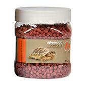 Komodo Tortoise Diet Dandelion