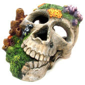 Classic Aquatic Artefacts Skull 195mm