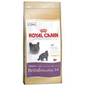 Royal Canin British Shorthair 34 Adult Dry Cat Food