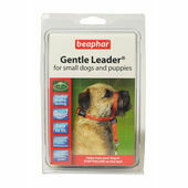 Canac Gentle Leader Small Dog Head Collar - Black