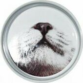 Ministry Of Pets Ceramic Cat Feeding Bowl