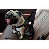 Petkit In Car Restraint Dog Safety Belt
