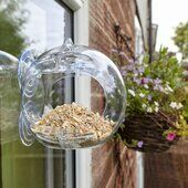 Peckish Globe Window Bird Feeder