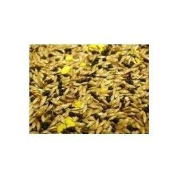 Canary Food