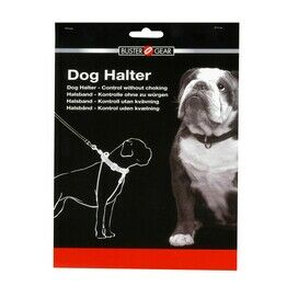 Dog Training Collars & Leads