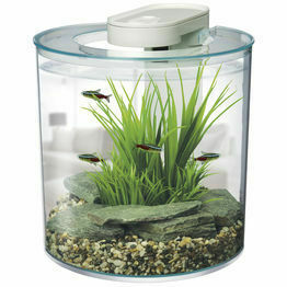 Fish Tanks, Bowls & Stands