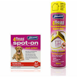 Dog Flea Treatments