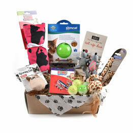 Cat Subscription Boxes