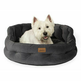 Dog Beds & Bedding