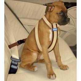Dog Car Travel Accessories