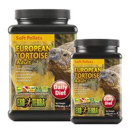 Reptile Supplies - Over 1000 Reptile Products At Great Prices