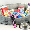 The Pet Express Large Puppy Dog Starter Kit additional 2