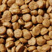 Dr John Puppy Food Chicken Recipe 10kg additional 2